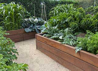 planejando um canteiro para jardim