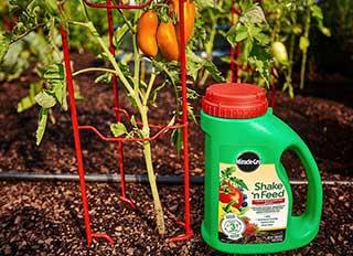 fertilizantes NPK para o canteiro